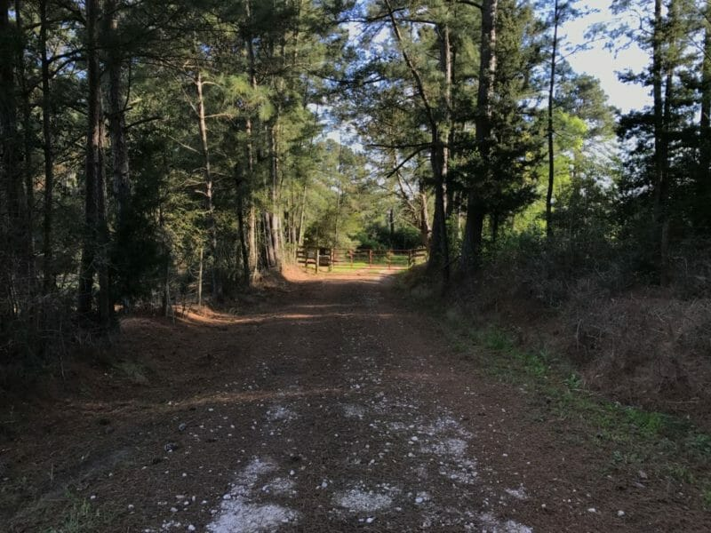 Navasota Driveway