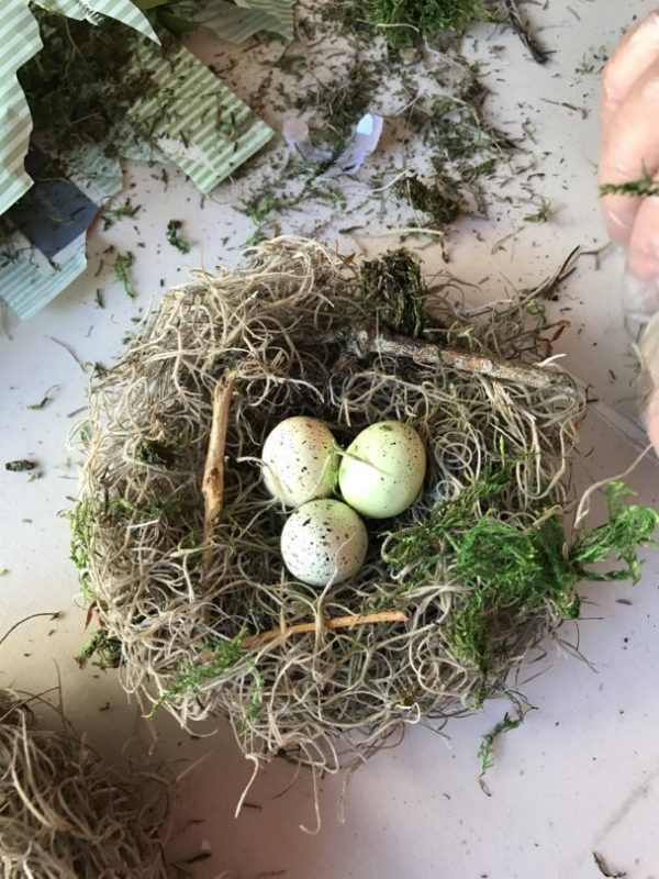 Making nests with Spanish Moss DIY