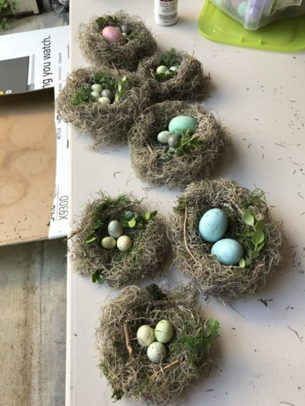 How to make nests with Spanish Moss
