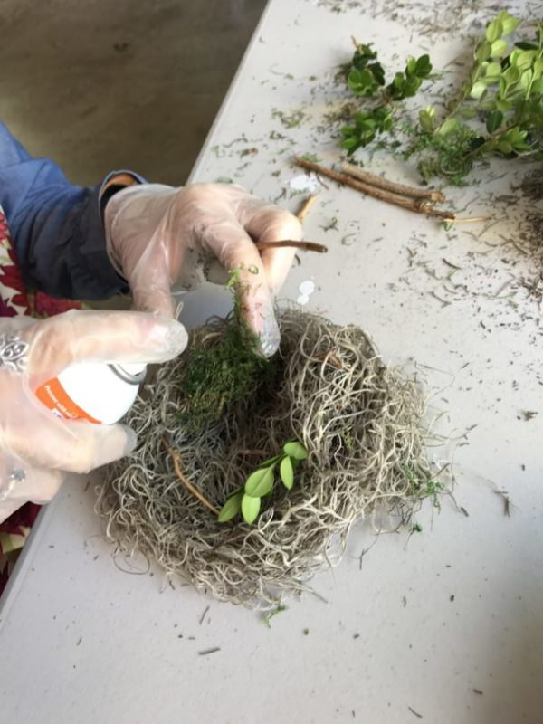adding twigs and moss to nests