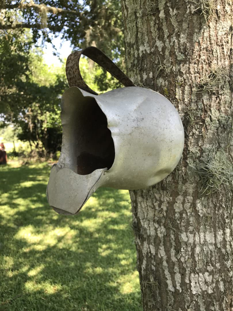 vintage pitcher used as a birdhouse
